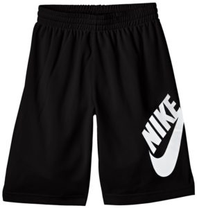 Nike Boys Youth SB Logo Dri Fit Shorts Review