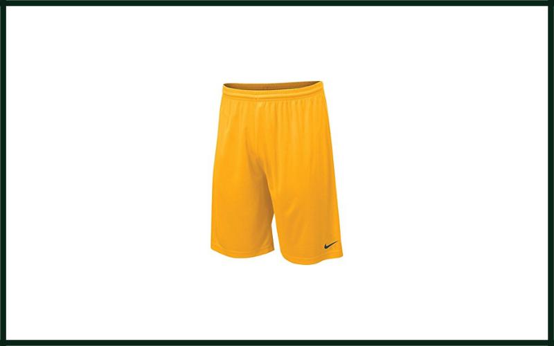 Nike Men's Team Fly Dri Fit Shorts