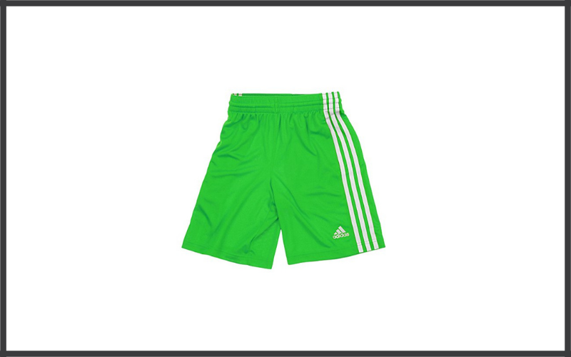 Adidas Big Boys Youth Performance Climate Shorts Review